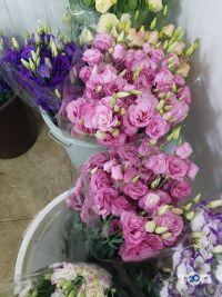 Цветы от Максимовой, живі квіти оптом - фото 7