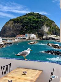 Дельфін, туристичне агентство - фото 30