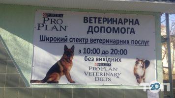 Біле Ікло, ветеринарна амбулаторія - фото 3