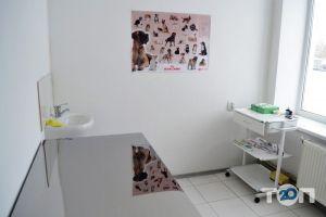 Vip хвіст, ветеринарна клініка - фото 1