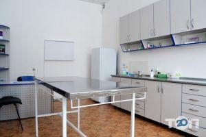 Vip хвіст, ветеринарна клініка - фото 3