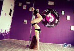 Vinyl Pole Dance Studio, танець на пілоні - фото 4