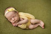 Горошка, фотостудия для новорожденных - фото 1