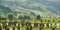Олви-Тур, турфирма - фото 1