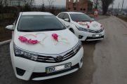 Украшения на свадебное авто - фото 1