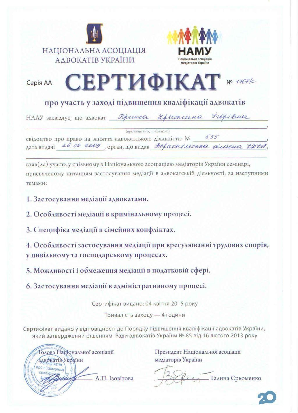 Адвокат Брикса Христина - фото 7
