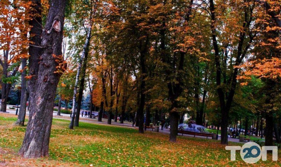 Екскурсовод по Виннице - фото 4