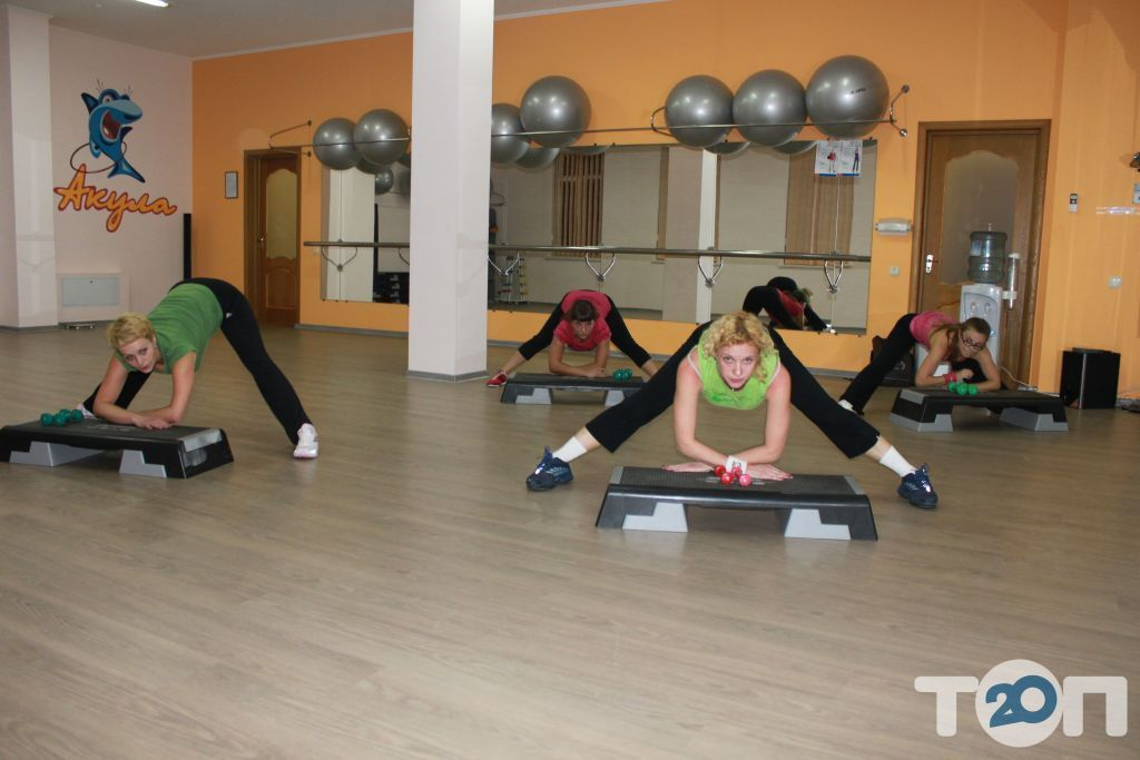 Акула, фитнес клуб - фото 11