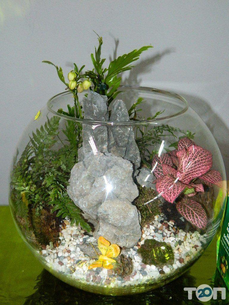 Green flora, склад-магазин цветов - фото 1