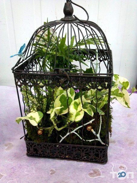 Green flora, склад-магазин цветов - фото 2