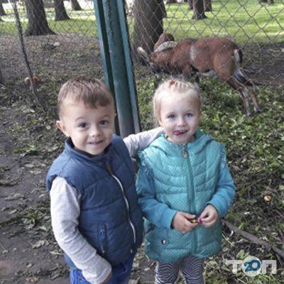 Капитошка, Клуб развития ребенка - фото 2