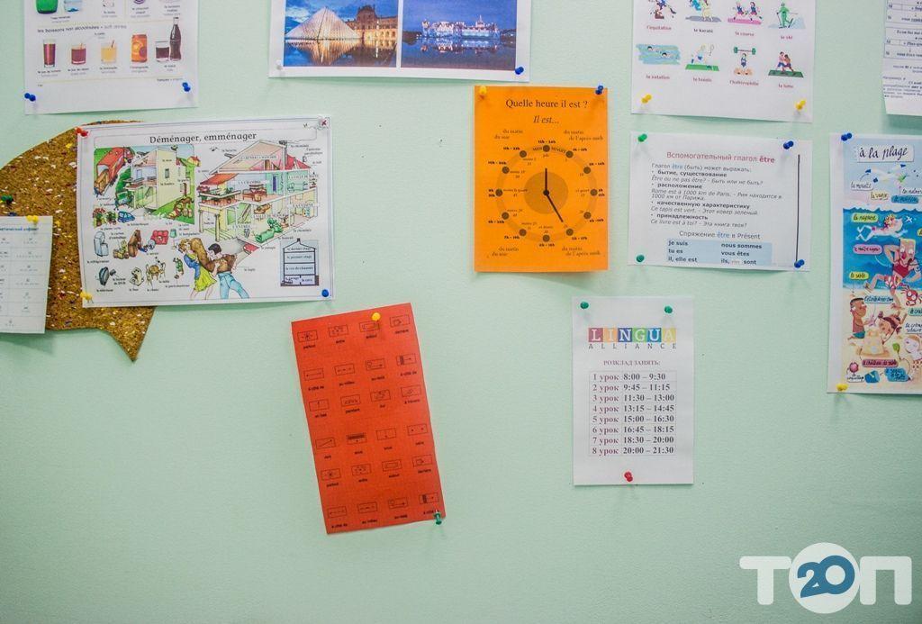 Lingua Alliance, школа иностранных языков - фото 33