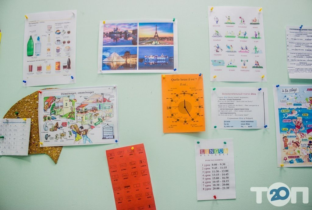 Lingua Alliance, школа иностранных языков - фото 30