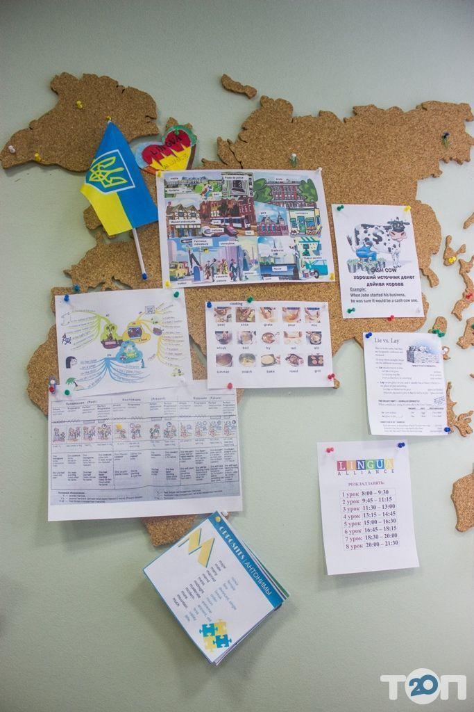 Lingua Alliance, школа иностранных языков - фото 42