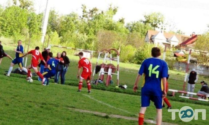 Областная федерация футбола - фото 3