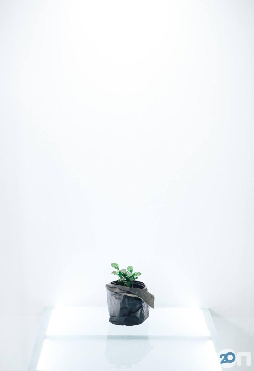 СКОВОРОДКА, кофейня - фото 4