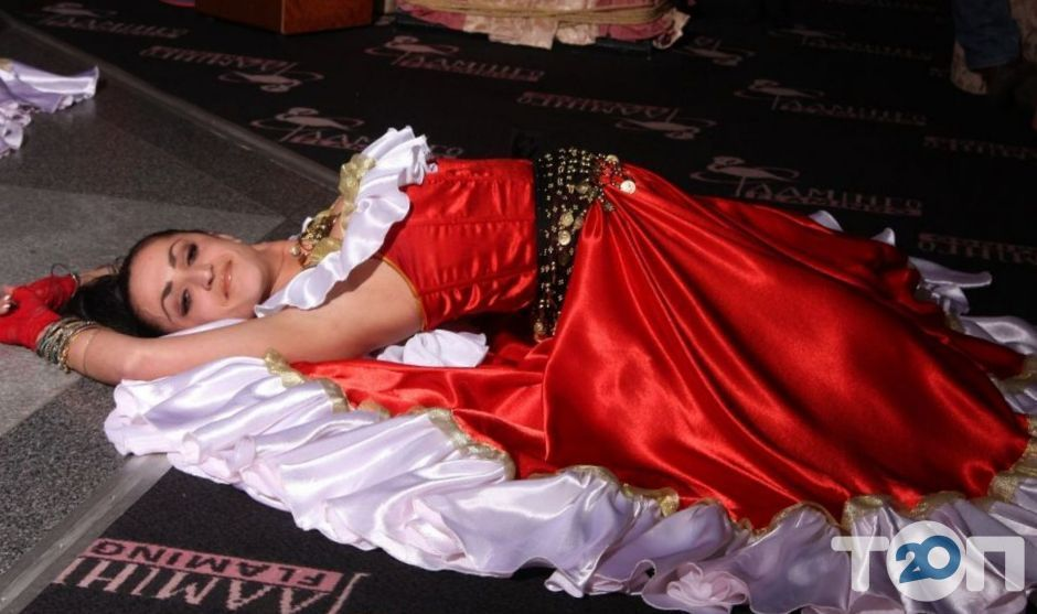 Андо Шатро, цыганский шоу-театр - фото 2