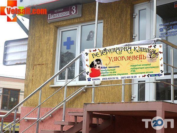 Ветеринарная клиника «Любимец» - фото 1