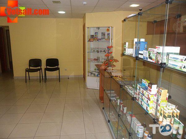 Ветеринарная клиника «Любимец» - фото 2