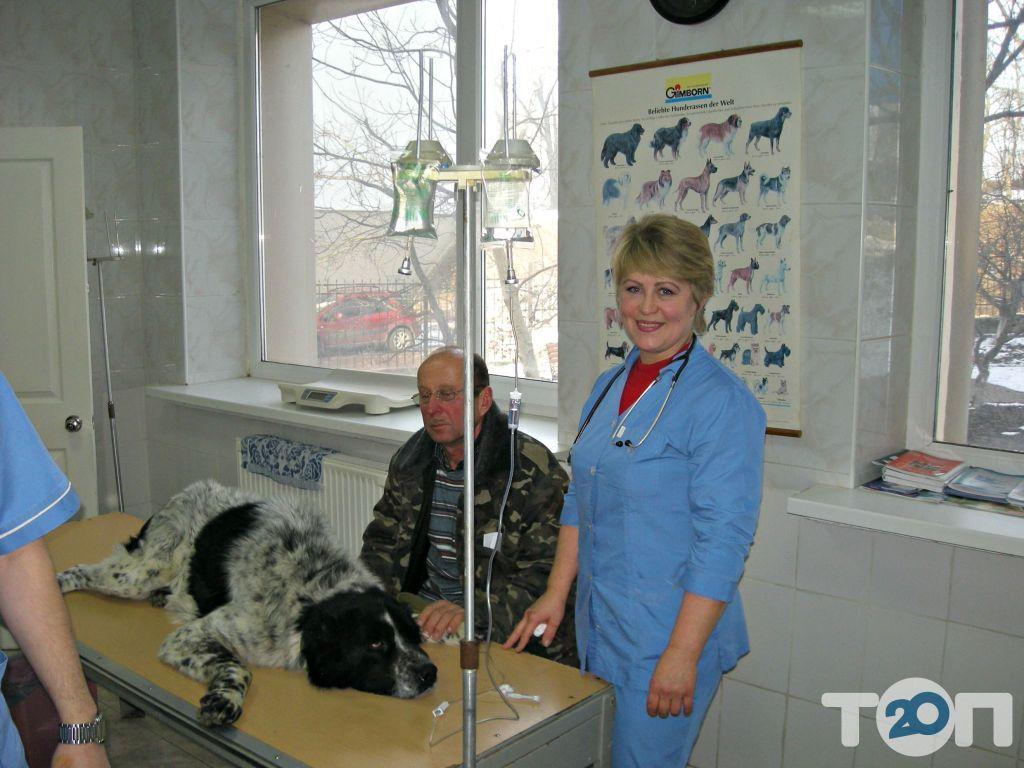 Ветеринарная клиника - фото 7