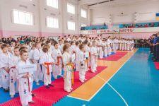 Областная федерация каратэ киокушинкай - фото 1