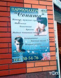 Соната, парикмахерская - фото 1