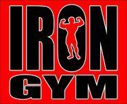 Iron Gym, тренажерный зал - фото 1