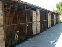 Doctor Zoo, ветеринарная клиника - фото 4