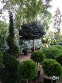 Botanica, садовый центр - фото 8
