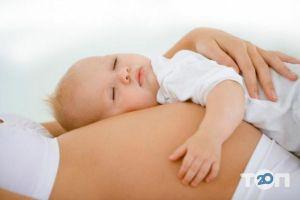 Мама Всем, центр суррогатного материнства - фото 2