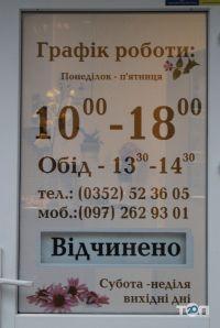 Барвинок, центр здоровья - фото 3