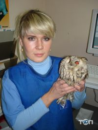 Айболит, ветеринарная клиника, груминг-салон, зоомагазин - фото 26
