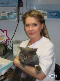 Айболит, ветеринарная клиника, груминг-салон, зоомагазин - фото 32