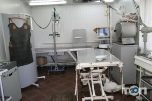 Багира, ветеринарная лечебница - фото 10