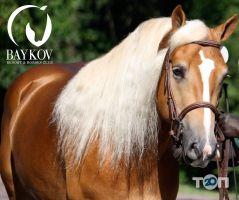 Baykov Resort & Horses Club, заміський кінний клуб - фото 5