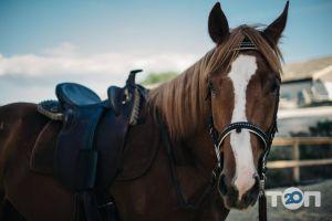 Baykov Resort & Horses Club, заміський кінний клуб - фото 6