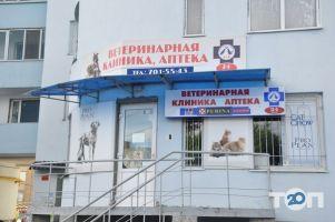Дар, центр ветеринарных услуг - фото 7