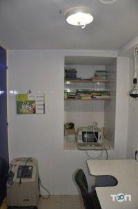 Дар, центр ветеринарных услуг - фото 9