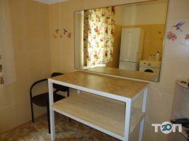 Ветеринарная клиника «Доктор Хвостус» - фото 7
