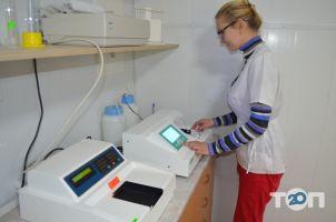 Долина, Ветеринарная клиника, гостиница для животных, лаборатория, стационар для животных в Одессе - фото 1