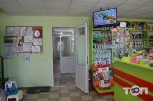 Долина, Ветеринарная клиника, гостиница для животных, лаборатория, стационар для животных в Одессе - фото 4