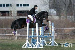 Княжий Двор, конно-спортивный комплекс - фото 1