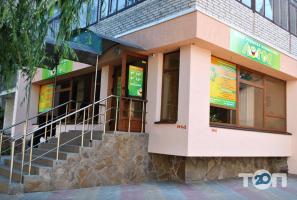 Логос, центр развития личности - фото 3