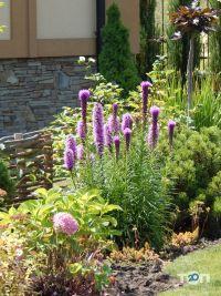 Майстерня ландшафтного дизайну Fox Garden - фото 1