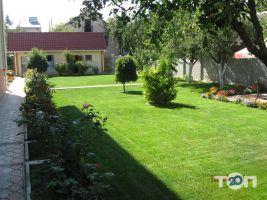 Майстерня ландшафтного дизайну Fox Garden - фото 2