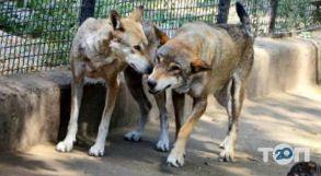 Одесский Зоопарк - фото 25