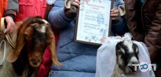 Одесский Зоопарк - фото 23