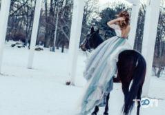 Прокат лошадей Конюшня «Пегас», прогулки верхом, иппотерапия, фотосессии с лошадьми - фото 13