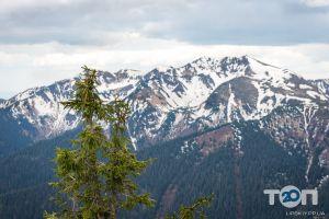 Путешествие, туристическое агентство - фото 8