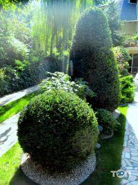 Садовник, ландшафтные услуги - фото 2